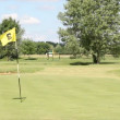 Stock Video: Golf course with yellow flag