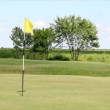 Stock Video: Golf yellow flag number four