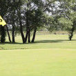 Stock Video: Golf yellow flag