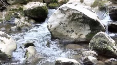 Creek with rocks nature scene — Stock Video