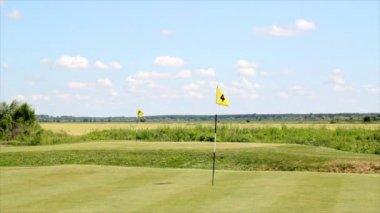 Parcours de golf avec deux drapeaux jaunes — Vidéo