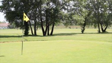 Golf yellow flag — Stock Video