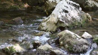 Nature scene mountain stream — Stock Video