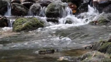 Spring water nature scene — Stock Video