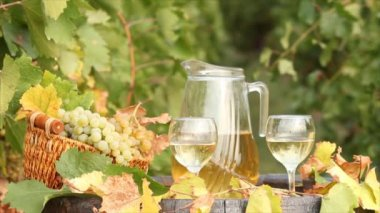 White wine autumn scene — Stok video