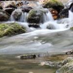 Creek with rocks spring scene — Stock Photo
