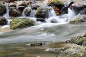 Creek with rocks spring scene — Stock Photo
