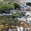 Mountain creek spring nature scene — Stock Photo