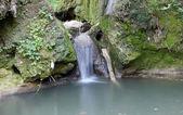 Nature spring scene creek — Fotografia Stock