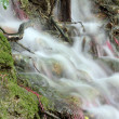 Stock Photo: Fresh spring water nature detail