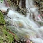 Fresh spring water nature detail — Stock Photo