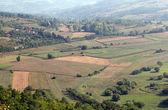 Jordbruksmark sommar landskap natur scen — Stockfoto