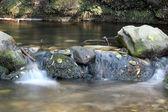 清澈的水春天自然场景 — 图库照片