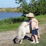 Child cowboy and pony horse — Stock Photo #25616013