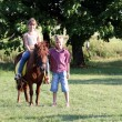 Happy little girl and boy with pony horse on field — Stock Photo #29721333