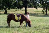 Piękny mały dziewczyna i kucyk konia na pole — Zdjęcie stockowe