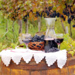 Vineyard with grape and red wine — Stock Photo