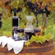Vineyard with grape and wine — Foto Stock