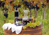Vineyard with grape and wine — Stock Photo