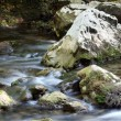 Rocks and creek water spring season — Stock Photo