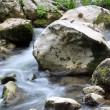 Stream water with rocks spring season — Stock Photo