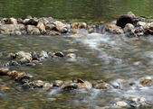 Stream water with rocky bottom spring season — Stock Photo
