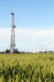Oil drilling rig on green wheat field — Stock Photo