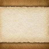 Blank paper sheet on grunge background — Stock Photo