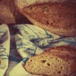Retro bread set — Stock Photo