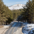 Stock Photo: Road at Mountain Range