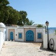 Stock Photo: sidi bou said