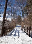 Holzbrücke — Stockfoto