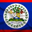 Belize flag — Stock Photo #30769343