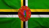Dominica flag — Stock Photo