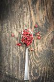 Red peeper — Stock Photo