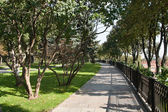 Alley in Taynitskiy garden of the Moscow Kremlin — 图库照片