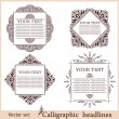 vector set: calligraphic design elements — Stock Vector