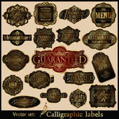 Vector set of Labels: Guaranteed, Premium Quality, Premium Rate — Stock Vector