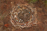 Man Made Nest — Stock Photo