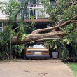 Cyclone Damage - Stock Photo
