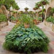 Stock Photo: Garden Conservatory