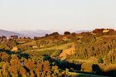 Perugia, Italy — Stock Photo
