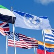 Stock Photo: United Nations Flag
