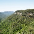 Stock Photo: Kangaroo Valley