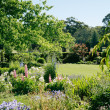 Formal Garden — Stock Photo #34919759