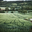 Farmland Perugia — Stock Photo #48459755