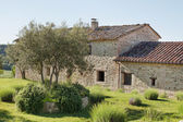 Stone Farmhouse — Stock Photo