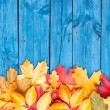 Autumn leaves over wooden background. Copy space. — Stock Photo #13405064