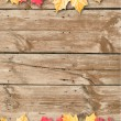 Autumn leaves over wooden background. Copy space. — Stock Photo #13405131