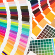 Stock Photo: Pantone, cmyk, ral color swatches